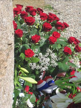 Les roses et la république